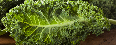 Foodservices Management – From Kale To Watercress And Beyond